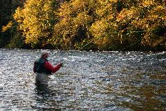 Fly Fishing-Campbell River - Oct.06