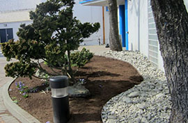 Tidemark Square Landscaping